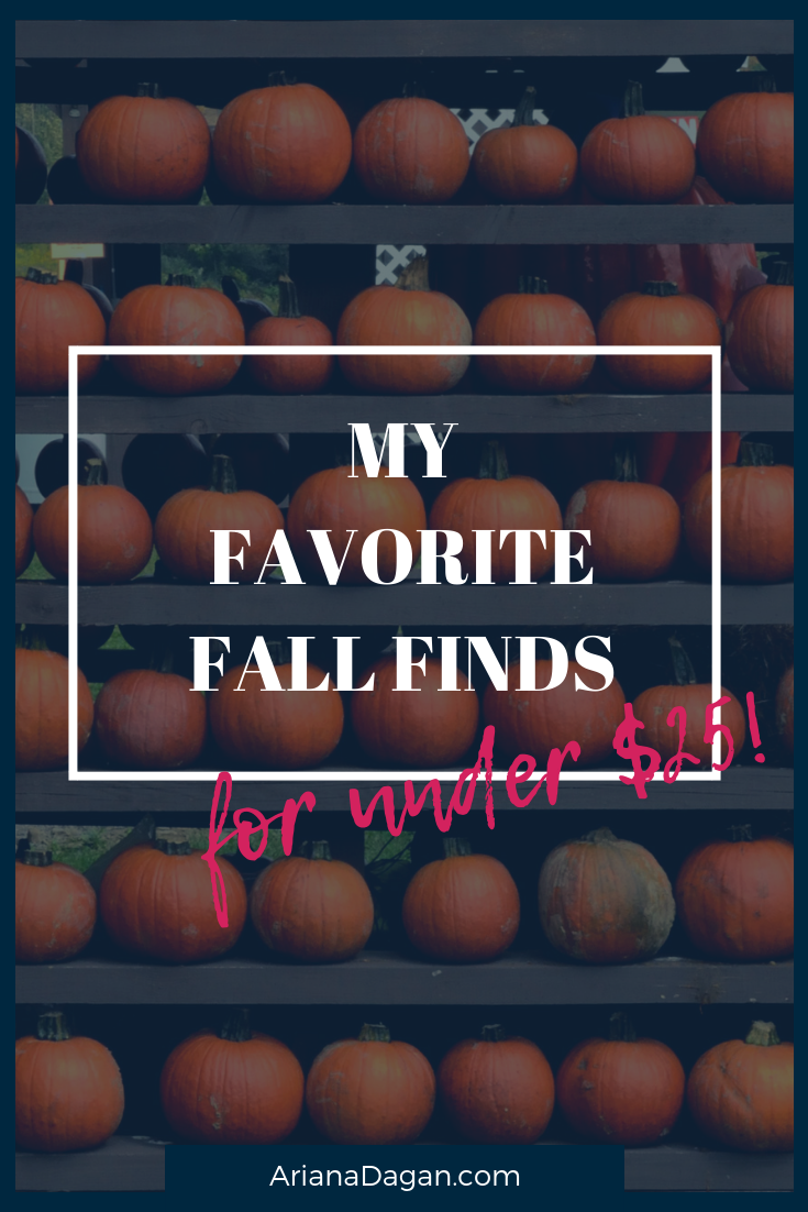 My Favorite Fall Finds for under $25