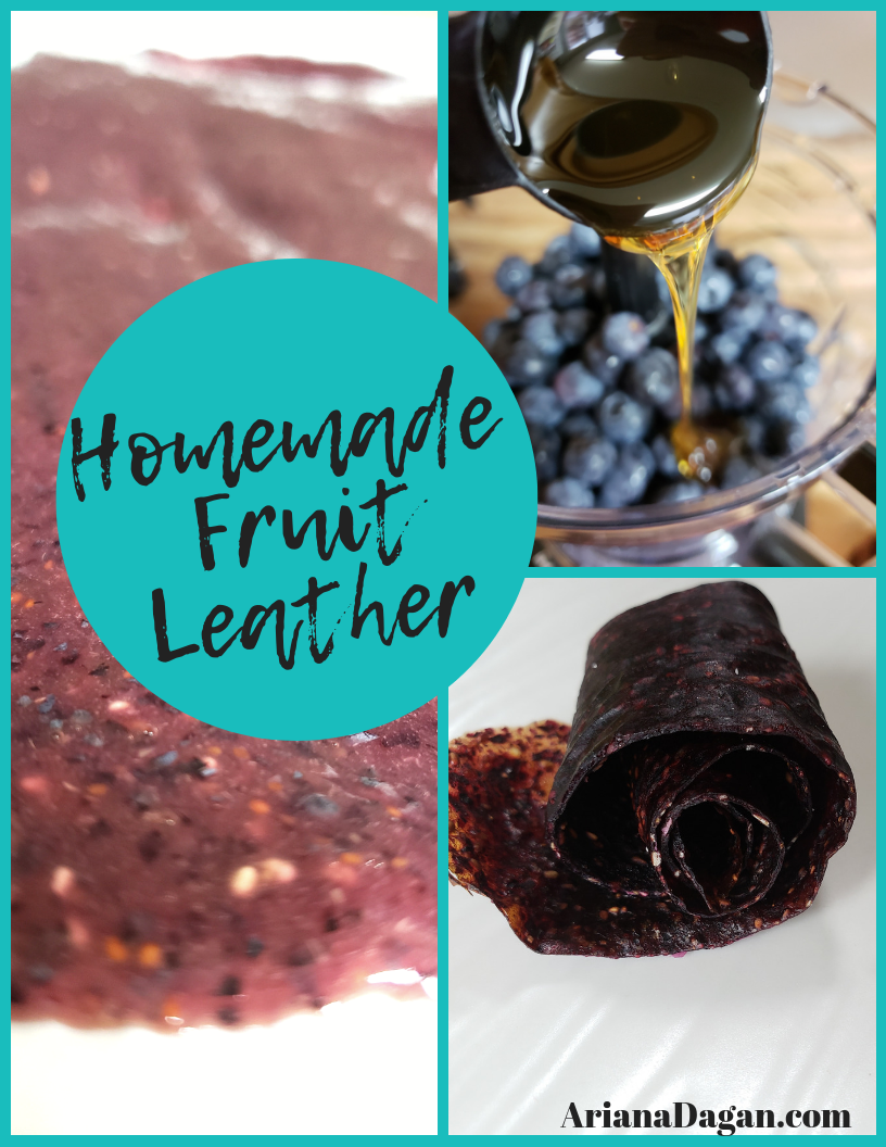 Introduction to Fruit Leather Dehydration