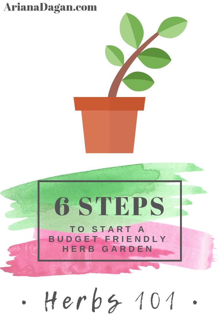 How to Start a Budget Friendly Herb Garden by Ariana Dagan